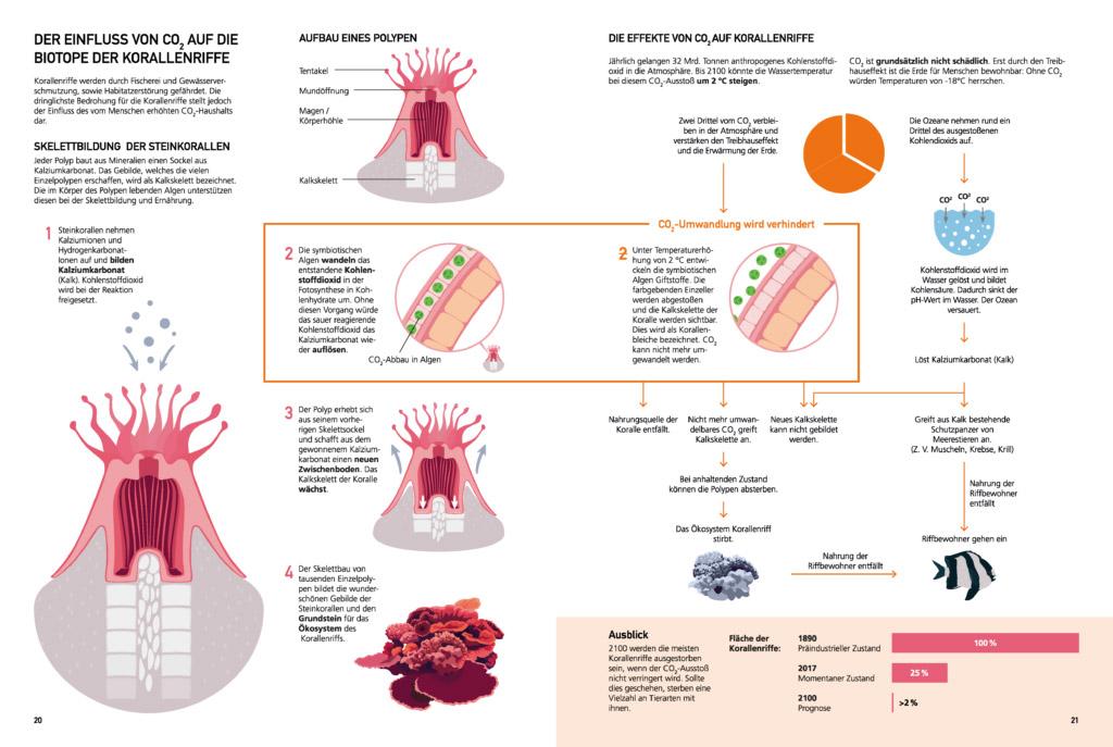 sterling-sonja-bachelorarbeit-gdvk-biodiversitaeat-ozean-13
